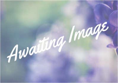 AwaitingImage.jpg